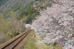 春爛漫~ありがとう三江線~