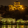 三渓園の夜桜7