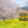 春色の汽車7