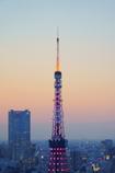 色付き始める東京タワー