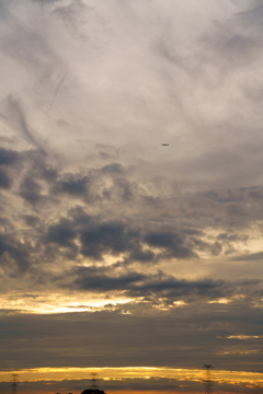 黄金の空の上を飛ぶ