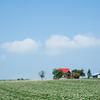 ジャガイモ畑と赤い屋根