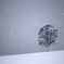 snow fantasy
