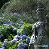 仏像と紫陽花
