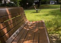 SONY ILCE-7RM2で撮影した(木漏れ日ベンチ)の写真(画像)