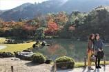 天龍寺の庭2