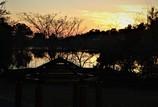 秋の夕日 #2