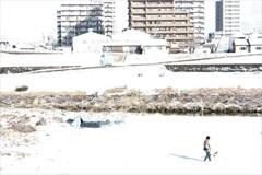 雪の白さに