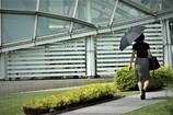 名古屋散歩道残暑