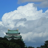 CANON Canon EOS Kiss X5で撮影した(名古屋城 夏#4)の写真(画像)