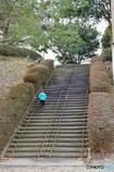大人の階段上る♪
