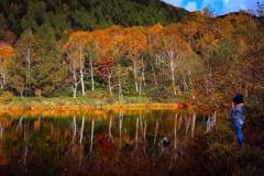 志賀高原 木戸池