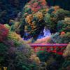 君と、紅葉を眺めながら ~松川渓谷~