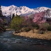 大出の吊橋と春の景観 ~白馬村~
