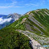 家族登山2016 栂池スカイライン