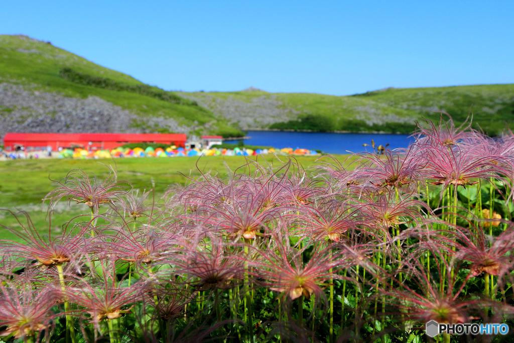 家族登山2016 白馬大池キャンプ場