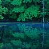 青くなった沼。。。
