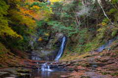 赤目五瀑 琵琶滝と紅葉