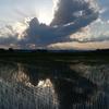 夕暮れの雲2