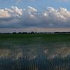 初夏の田園風景2