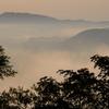 朝霧の里山風景