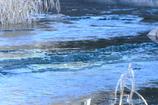 そら色の川