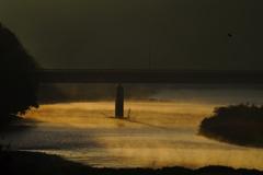 朝日の当たる川