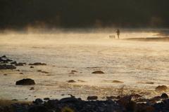 朝の川にて