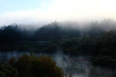 霧の朝 その2