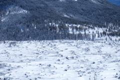 雪道を進軍