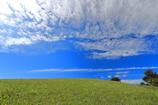 高原の青空