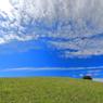CANON Canon EOS 70Dで撮影した(高原の青空)の写真(画像)