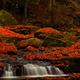秋色の小さな滝
