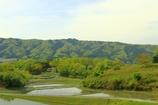 初夏の田園風景