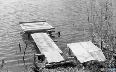 魚釣り桟橋