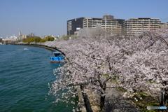 春や春 4