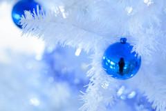 銀世界のクリスマスツリー