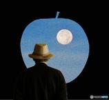 月の綺麗な夜