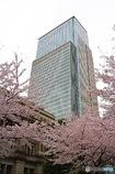 日本銀行本店本館と三井タワー