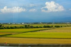 新幹線の窗
