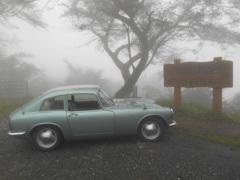 霧の中で 3505