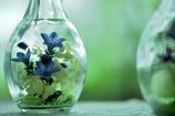 ガラスの中の花