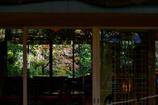窓向こうに広がる紅葉