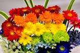 花の創作36
