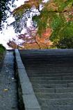 石段の向こうの紅葉