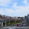 路面電車と飛鳥山
