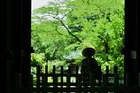 夏の日の山門にて