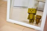 Danboard In the mirror