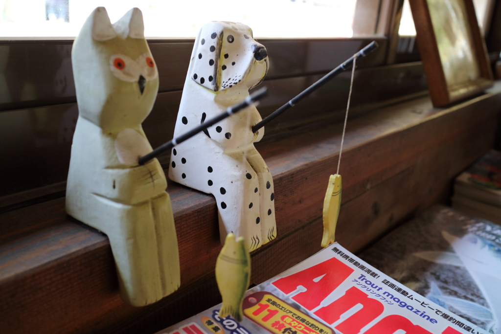 今日は釣り日和~