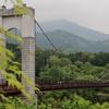 紅葉と吊り橋(県立秦野戸川公園)